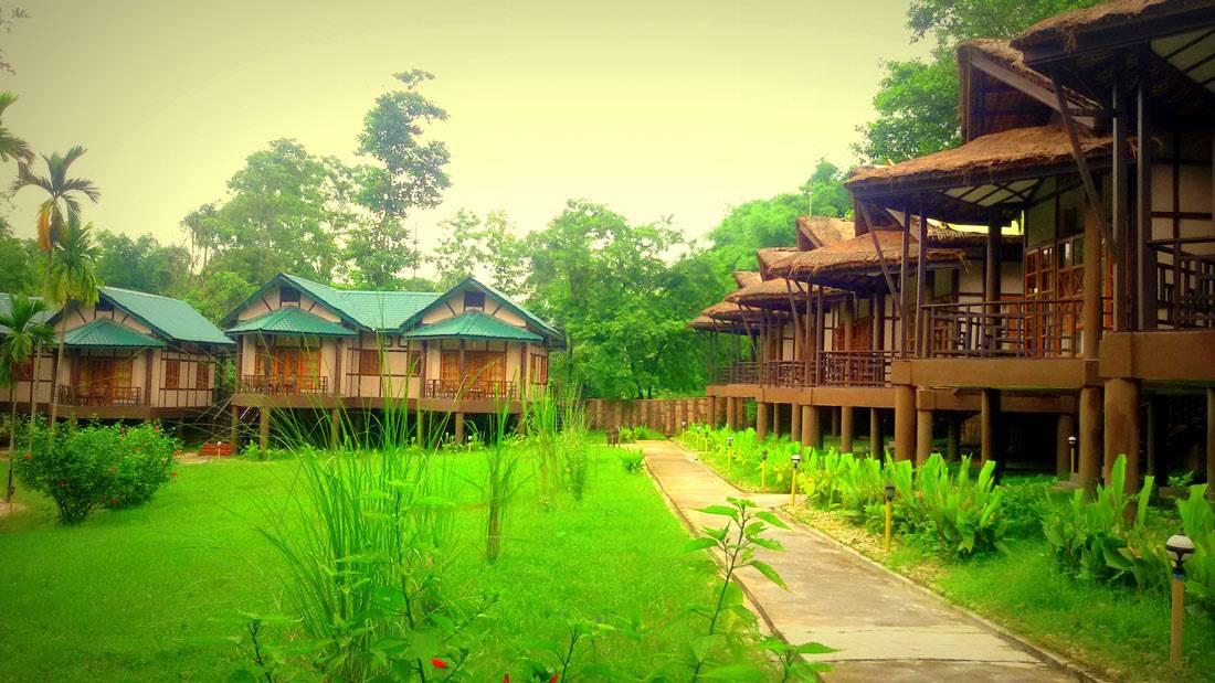 Infinity Resort Kaziranga Wildlife Resort Assam Layla S